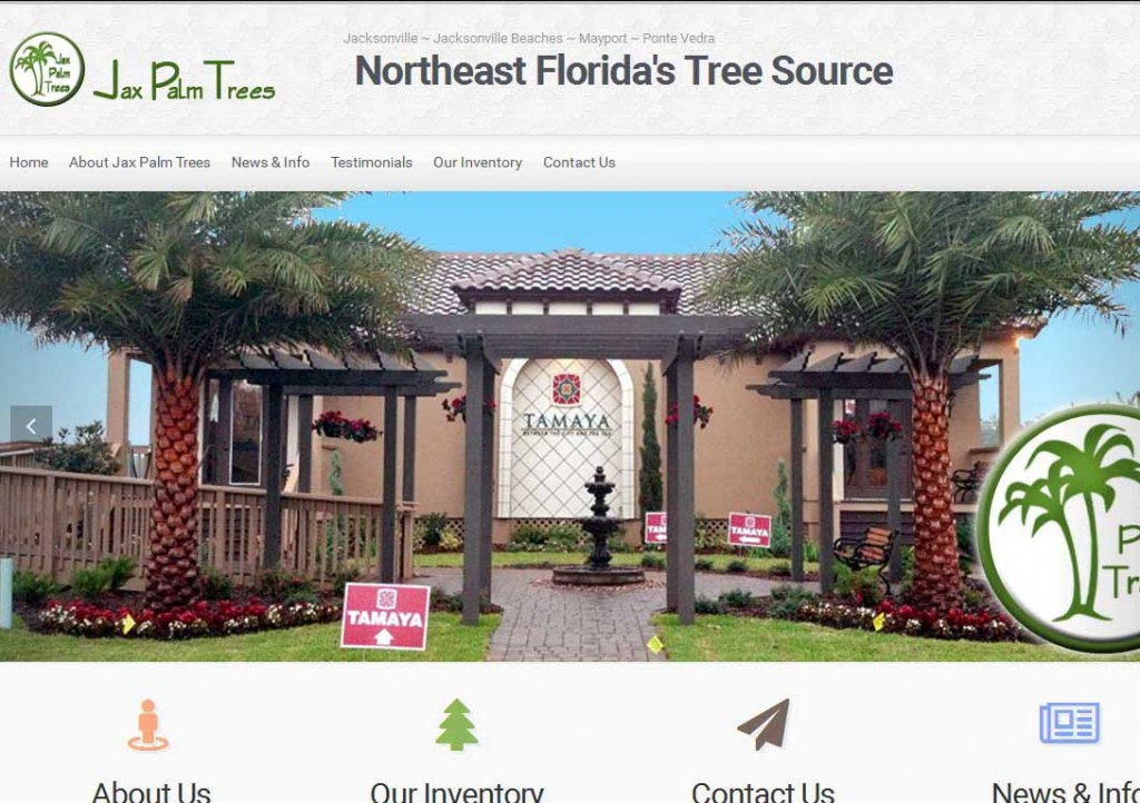PTC-Clients-Screenshots-Jax Palm Trees